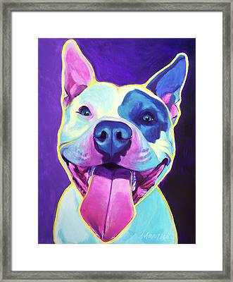 Pit Bull - Big Louie Framed Print by Alicia VanNoy Call
