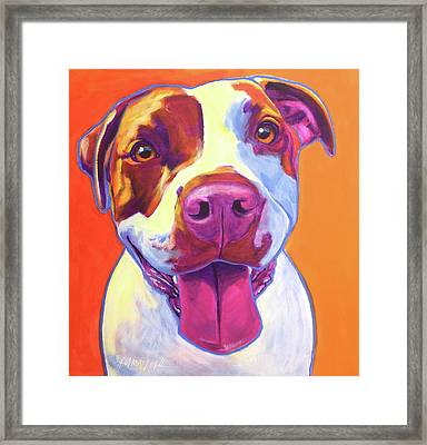 Pit Bull - Gemma Framed Print by Alicia VanNoy Call