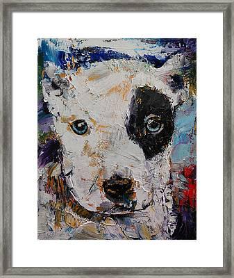 Pit Bull Puppy Framed Print