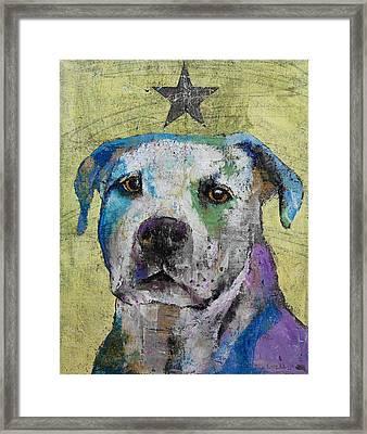 Pit Bull Terrier Framed Print