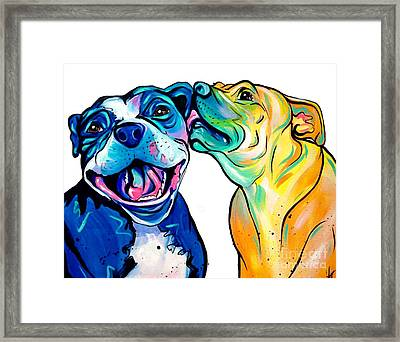 Pitbull Kisses Framed Print
