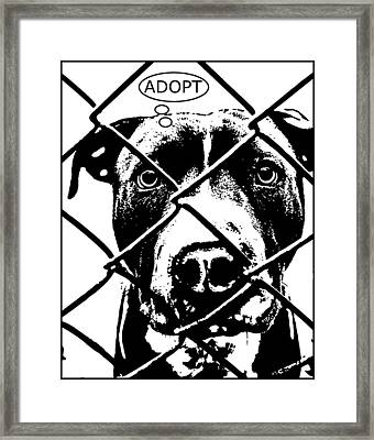 Pitbull Thinks Adopt Framed Print by Dean Russo