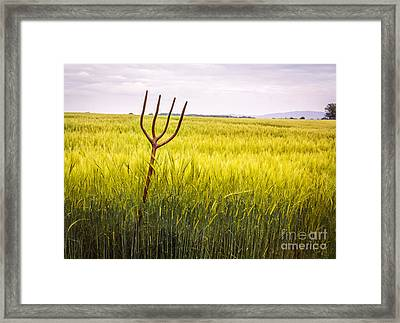 Pitch Fork In Wheat Field Framed Print by Amanda Elwell