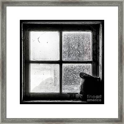 Framed Print featuring the photograph Pitcher In The Window by Brad Allen Fine Art