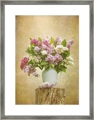 Pitcher Of Lilacs Framed Print