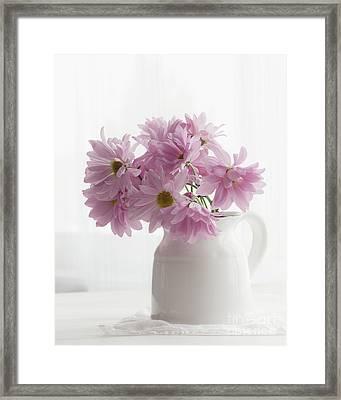 Pitcher Of Pink Framed Print