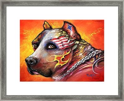 Pit Bull Framed Print by Patricia Lintner