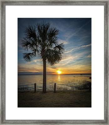 Pitt Street Bridge Palmetto Tree Sunset Framed Print