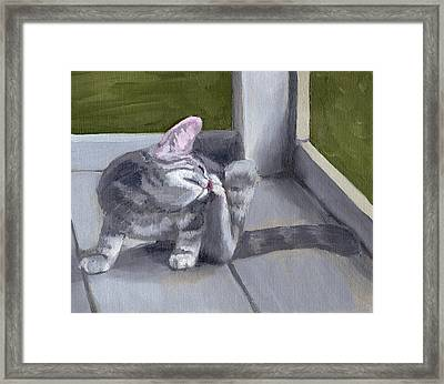 Pixie's Itch Framed Print
