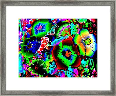 Pizzazz 15  Framed Print by Will Borden