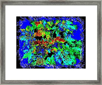 Pizzazz 52 Framed Print by Will Borden