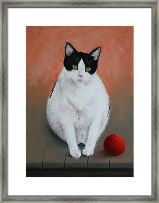 Pj And The Ball Framed Print
