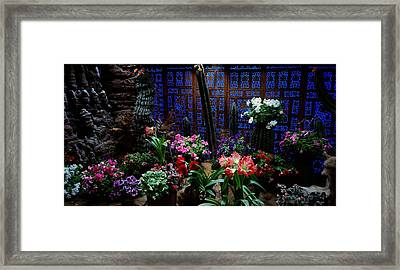 Place Of Magic 2 Framed Print