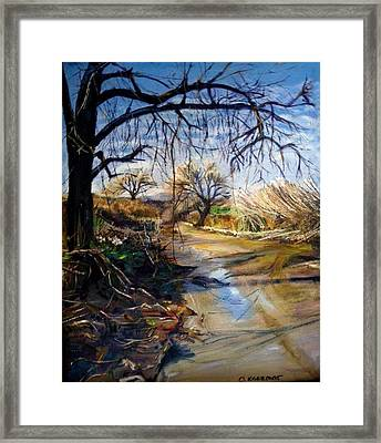 Placerita Creek 1 Framed Print by Olga Kaczmar