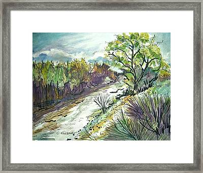 Placerita Creek 3 Framed Print by Olga Kaczmar