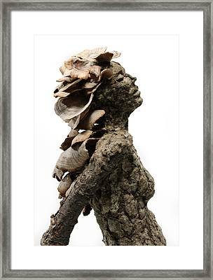 Placid Efflorescence A Sculpture By Adam Long Framed Print by Adam Long