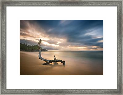 Placid Waters Framed Print by Todd Kawasaki
