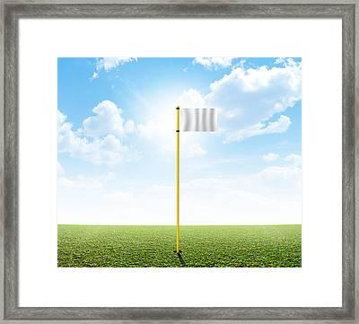 Plain Grass And Blue Sky Framed Print by Allan Swart