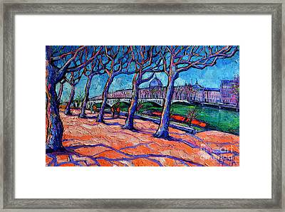 Plane Trees Along The Rhone River - Spring In Lyon By Mona Edulesco Framed Print