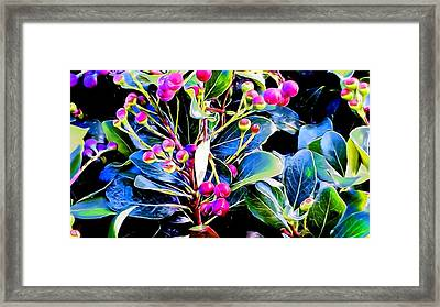 Plant 14 In Abstract Framed Print