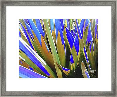 Plant Burst - Blue Framed Print