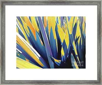 Framed Print featuring the photograph Plant Burst - Yellow by Rebecca Harman