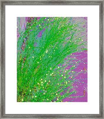 Framed Print featuring the photograph Plant Design by Lenore Senior