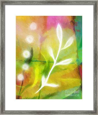 Plant Of Light Framed Print by Lutz Baar