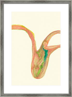 Plant - #ss14dw043 Framed Print by Satomi Sugimoto