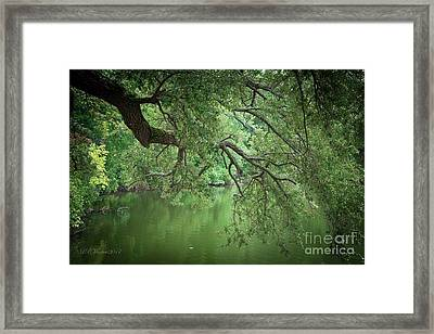 Planted By The Water Framed Print