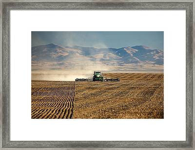 Planting Orangic Wheat Framed Print by Todd Klassy
