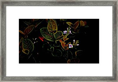 Plants In Abstract 19 Framed Print