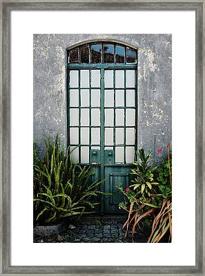 Framed Print featuring the photograph Plants In The Doorway by Marco Oliveira