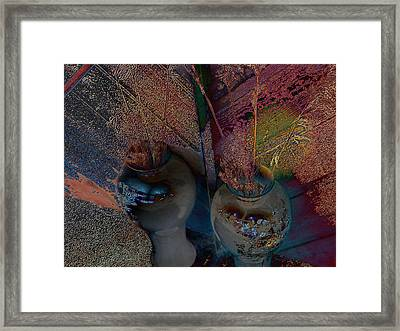 Plants In The Mirror Framed Print