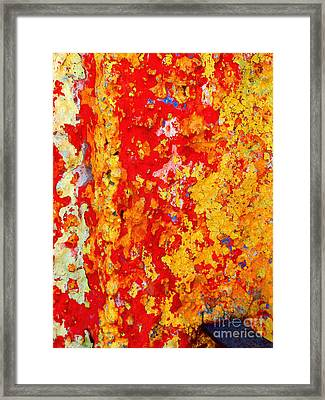 Plaster Abstract 5 By Michael Fitzpatrick Framed Print by Mexicolors Art Photography