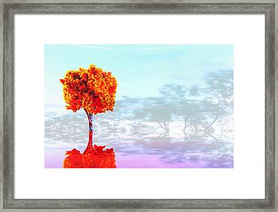 Plastic Planet Framed Print