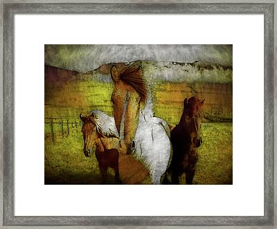 Framed Print featuring the photograph Plateau Ponies by Bellesouth Studio