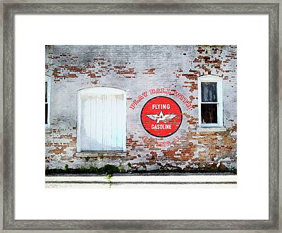 Play Ball With Flying A Framed Print by Sandy MacGowan