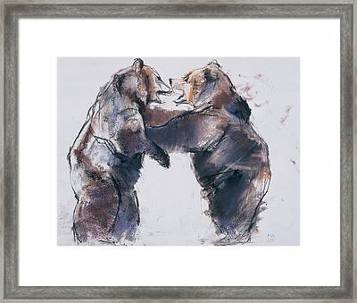 Play Fight Framed Print by Mark Adlington