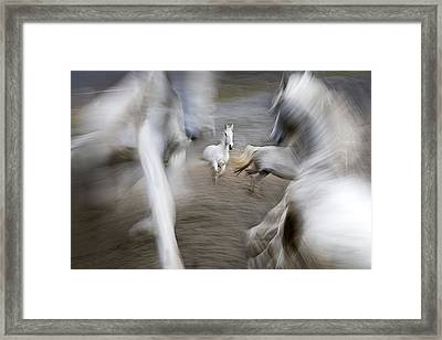 Play Ground Framed Print by Milan Malovrh