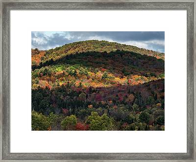 Play Of Light And Shadows. Framed Print