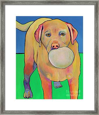 Play With Me Framed Print by Pat Saunders-White