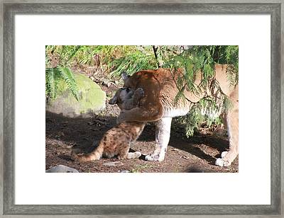 Framed Print featuring the photograph Playful Hugs by Laddie Halupa