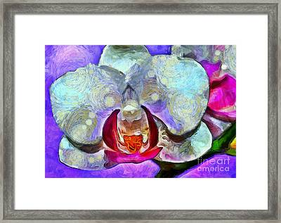 Playful Orchid Framed Print by Krissy Katsimbras