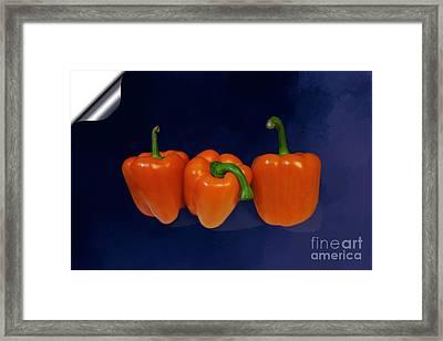 Playful Peppers Framed Print