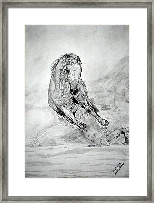 Framed Print featuring the drawing Playfull by Melita Safran