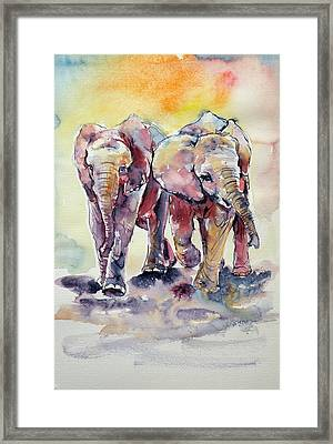 Playing Elephant Babies Framed Print