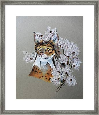 Playing In Milkweed Framed Print by Virginia Simmons