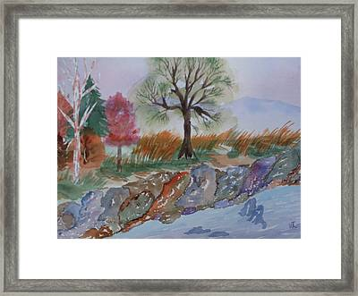 Playing With Color Framed Print by Warren Thompson