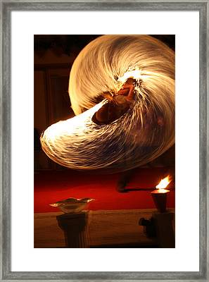 Playing With Fire Framed Print by Lee Anderson